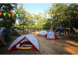 新潟県 長岡市おぐに森林公園 のイベント関連写真e348(2)