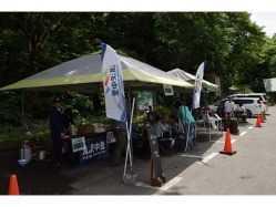 新潟県 大源太キャニオンキャンプ場 の新着関連写真t982(1)