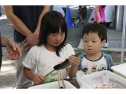 千葉県 清水公園 キャンプ場 のイベント関連写真e346(2)