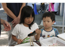 千葉県 清水公園 キャンプ場 のイベント関連写真e347(2)