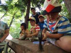 長野県 千年の森自然学校 のイベント関連写真e265(2)