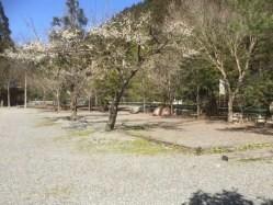 奈良県 オートキャンプとちお の新着関連写真t129(1)