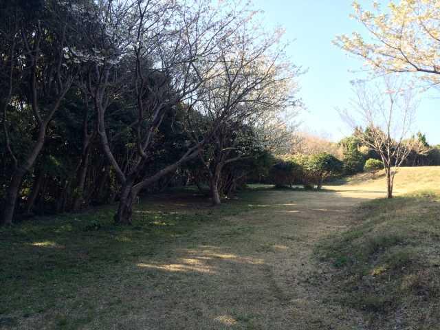 和歌山県 ACN南紀串本リゾート大島 の新着関連写真t103(1)