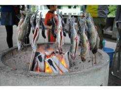 群馬県 奥利根温泉ホテルサンバード白樺キャンプ場 のイベント関連写真e359(4)