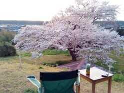 新潟県 海が見えるコテージ&キャンプ のイベント関連写真e626(1)