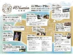 大分県 長崎鼻ビーチリゾート のイベント関連写真e713(2)