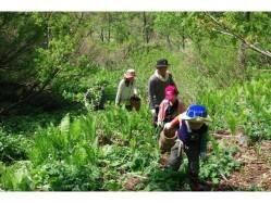 長野県 石坂森林探険村 のイベント関連写真e462(1)