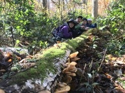 長野県 石坂森林探険村 のイベント関連写真e387(2)