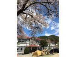 群馬県 HOTAKANE BASE の新着関連写真t2621(1)