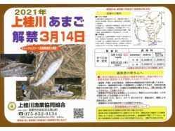 京都府 芦見谷芸術の森 の新着関連写真t2592(1)