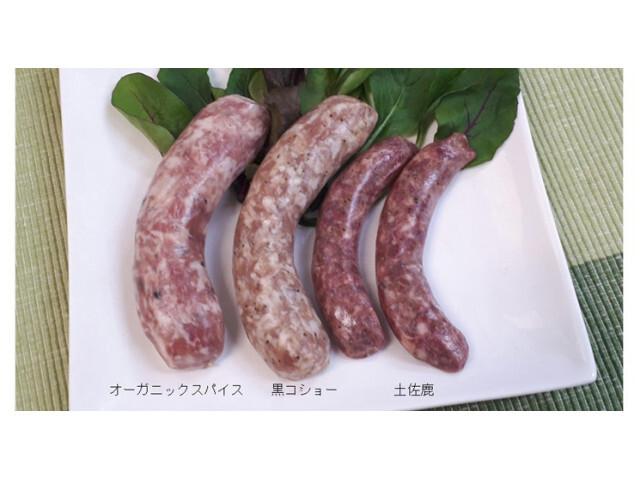 高知県 ONIWA の新着関連写真t103(1)