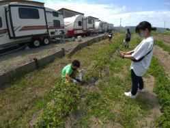 茨城県 ウォーターガーデンリゾート キャンプ&マリーナ のイベント関連写真e902(1)