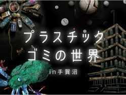 千葉県 RECAMP しょうなん(手賀の丘公園内) のイベント関連写真e976(1)
