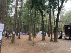 千葉県 RECAMP しょうなん(手賀の丘公園内) の新着関連写真t3184(3)