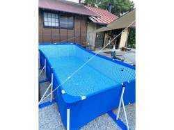 千葉県 Out Tail Dog Camp 館山 の新着関連写真t3147(1)